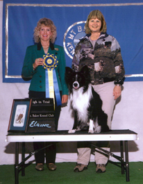 April 16, 2004 - Fable earns High In Trial at Mt. Baker Kennel Club